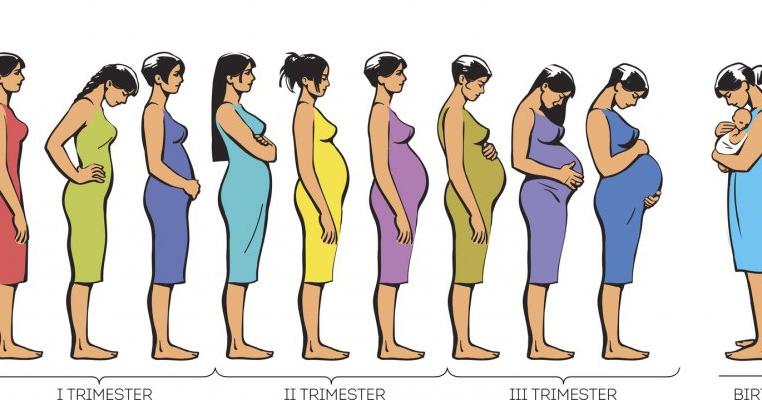 Cate saptamani are primul trimestru de sarcina