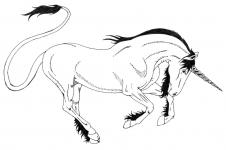 Unicorn De Colorat Planse Si Imagini De Colorat