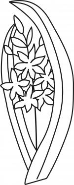 Desene De Colorat Zambila Qbebe Planse Si Imagini De Colorat