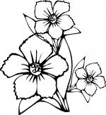 Planse De Colorat Flori De Toamna Qbebe Desene Si