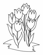 Desene De Colorat Flori Qbebe Planse Si Imagini De Colorat