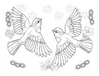 Desene De Colorat Pasari Qbebe Planse Si Imagini De Colorat