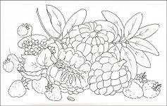 Desene De Colorat Fructe Qbebe Planse Si Imagini De Colorat