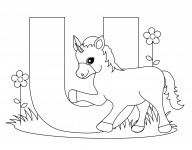 Desene De Colorat Litere Qbebe Planse Si Imagini De Colorat