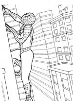 Desene De Colorat Spiderman Planse Si Desene De Colorat