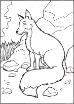 Desene De Colorat Animale Salbatice Qbebe Planse Si