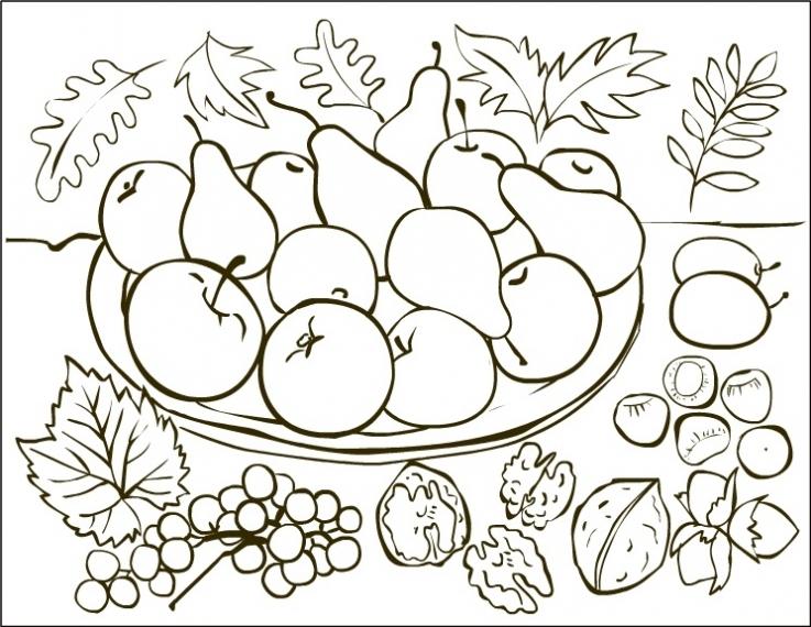 Fructe De Toamna Desene De Colorat
