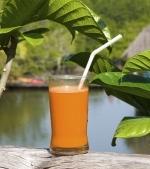 Suc de morcovi cu portocale