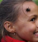 Atenție, părinți! Cum îți protejezi copilul de înțepătura de albină