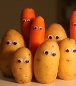Cartofiori si morcovei hranitori: de la 10 luni