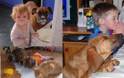 20 de momente în care copilul și animalul de companie s-au înțeles de minune