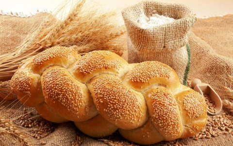 Cerealele folosite la fabricarea painii