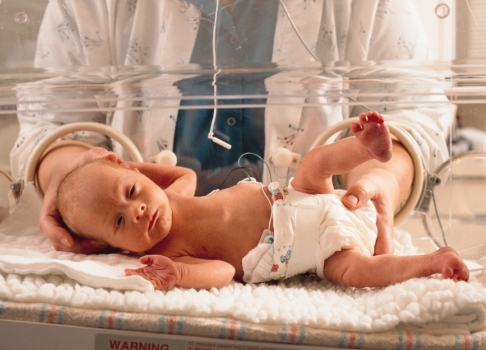 Bebelus in incubator