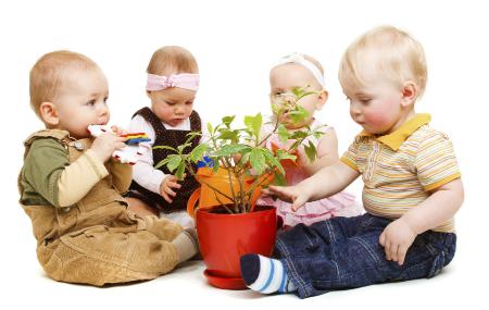 Copiii si plantele de apartament