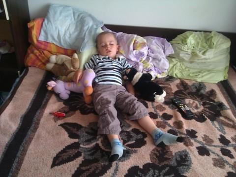 Iusti a adormit cu girafa si catelul