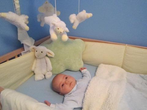 bebelus in patut