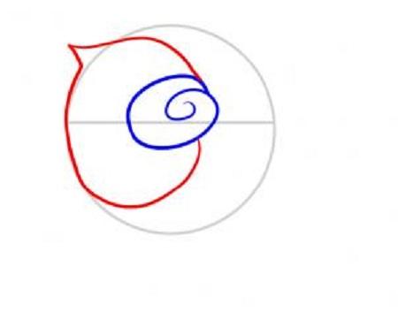 Cum sa desenezi un trandafir-pas 3