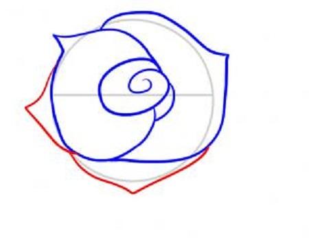 Cum sa desenezi un trandafir-pas 5