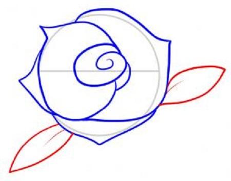Cum sa desenezi un trandafir-pas 6