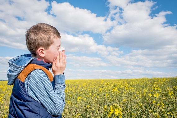 Copil ce se afla in fata unui camp inflorit si isi sufla nasul