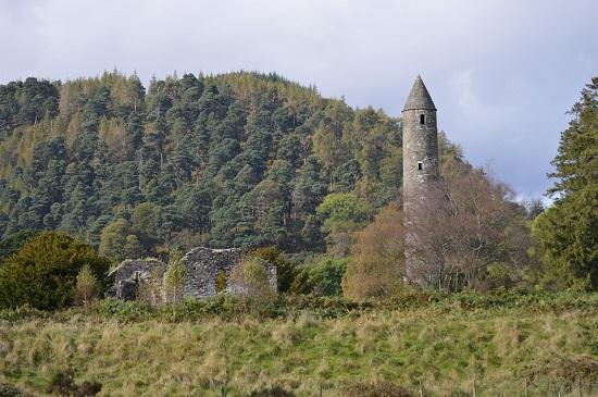 Padure spectaculoasa din Irlanda