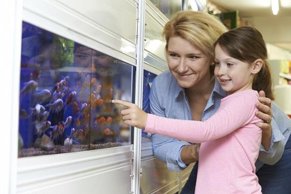 Mama si fiica ce se uita la pestii din acvariu