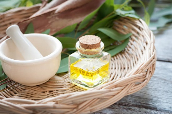 Frunze de eucalipt si sticluta de ulei de eucalipt
