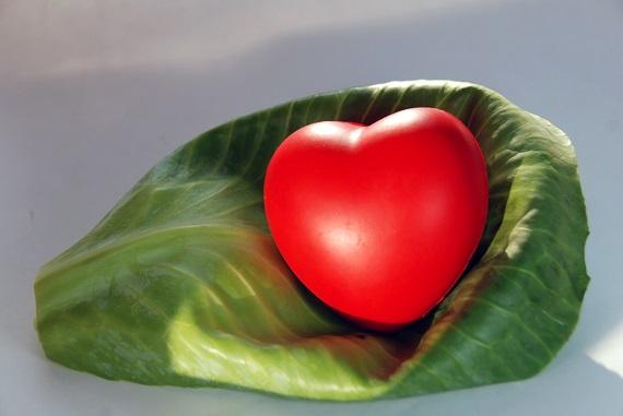 Inima din cauciuc, ce sta pe o foaie de varza