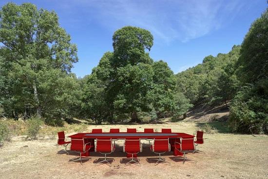 Padurea Boema- un loc fantastic de nevizitat