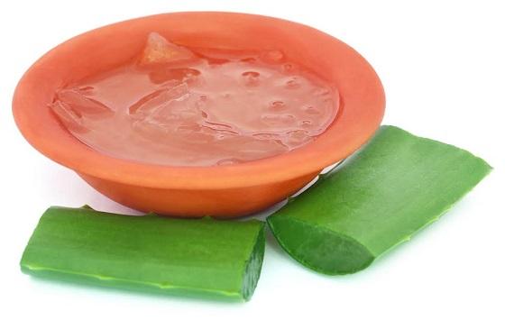 Planta si gel de Aloe Vera