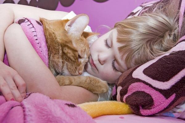 Un animal de casa poate provoca somnul intrerupt la copii