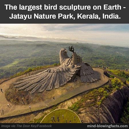 Cea mai mare sculptura pasare din lume