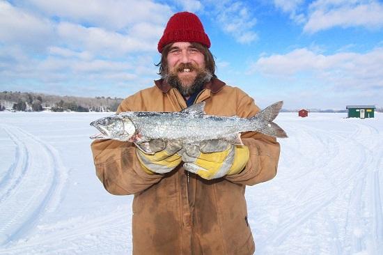 Heringul din zona arctica-unul dintre cei mai buni pesti