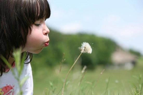 Fetita ce sufla in papadie