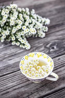 Ceai de musetel si flori de musetel