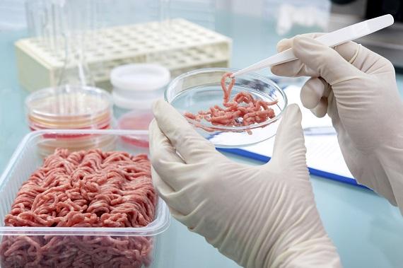 Posibila cauza a toxiinfectiei alimentare- carne contaminata