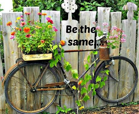 Gard decorat cu bicicleta si cu ghivece