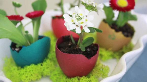 Suporturi pentru flori din coji de oua