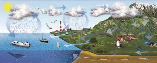 Reprezentare grafica a circuitului apei in natura