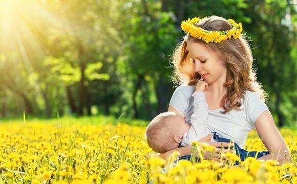 Mama cese afla pe un camp de flori si isi alapteaza bebelusul
