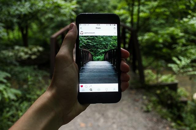 poza cu telefonul in natura