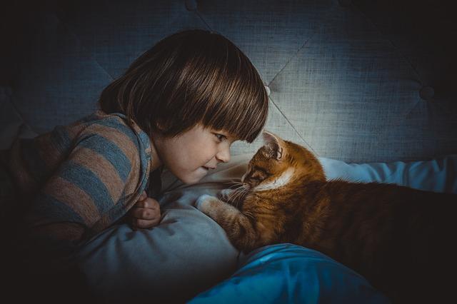 copil si pisica