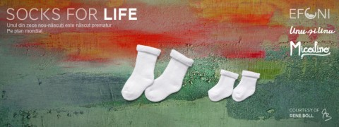 socks for life