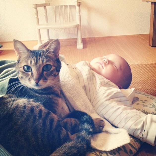 copil si pisica 2