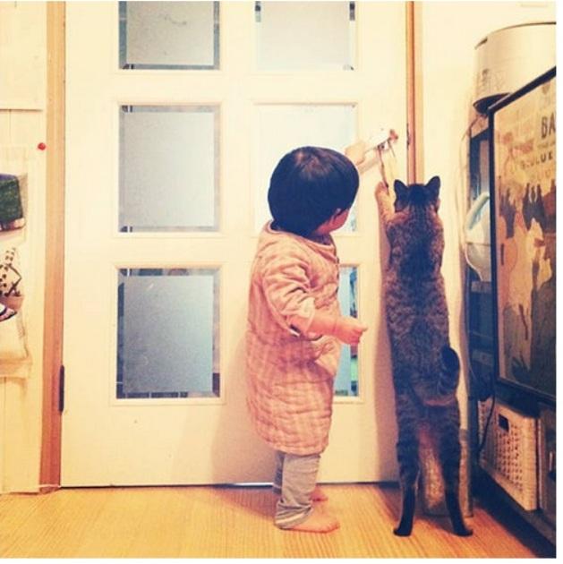copil si pisica 10