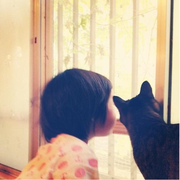 copil si pisica 8