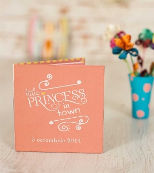 Little Princess Book