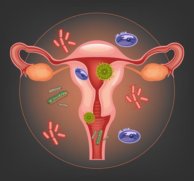 bacterii vaginale