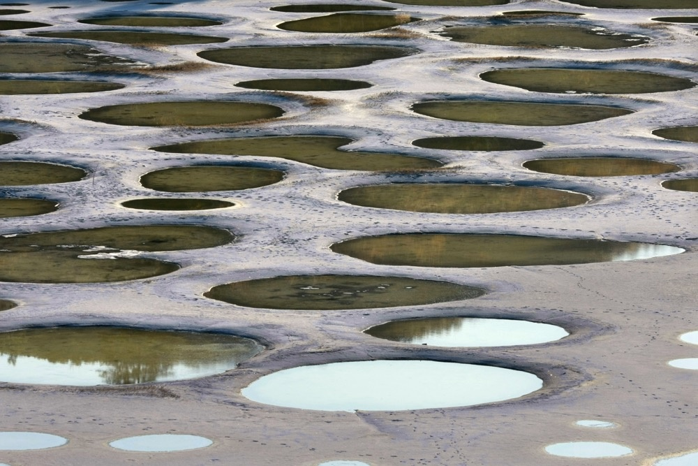 lacul patat