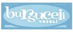 http://bursuceiiveseli.ro/